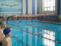 открытый турнир по плаванию